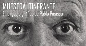 30.ojos_picasso_olavarria1